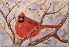 yankeegirl - cardinal