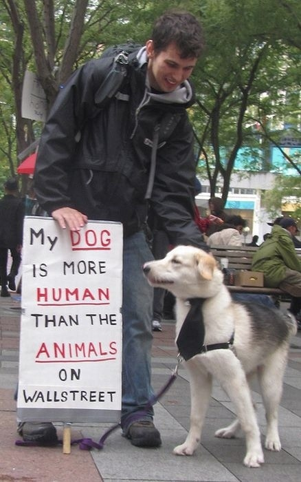 cute-pets-at-occupy-wall-street-04