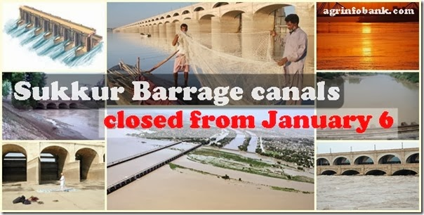 Sukkur Barrage canals to be closed from January 6