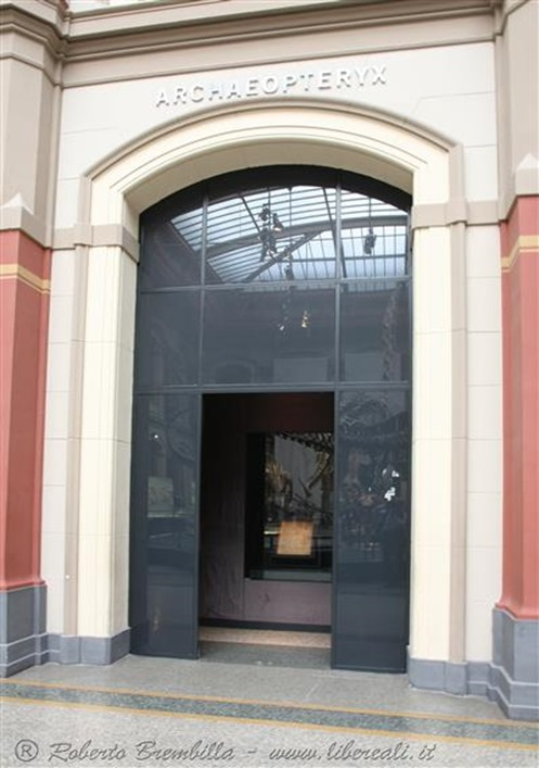 14_Museo Berlino_7297 c (Medium)