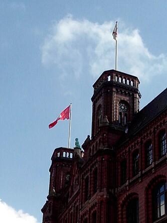 Pudel Hamburg