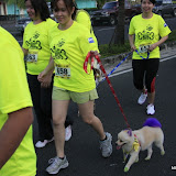 Pet Express Doggie Run 2012 Philippines. Jpg (94).JPG