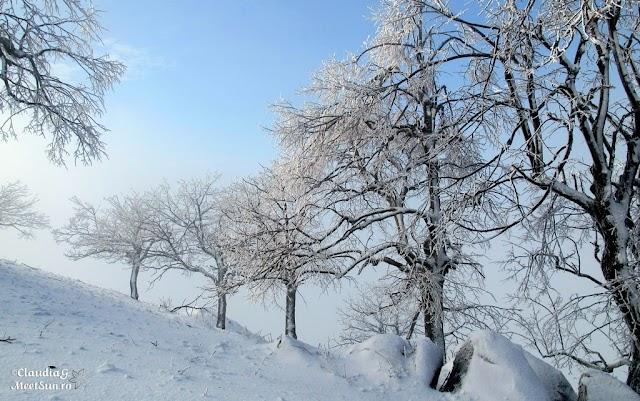 Macin-iarna-25_rw.jpg