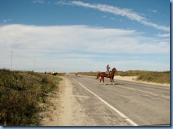 6024 Texas, South Padre Island - horseback riders crossing Padre Blvd