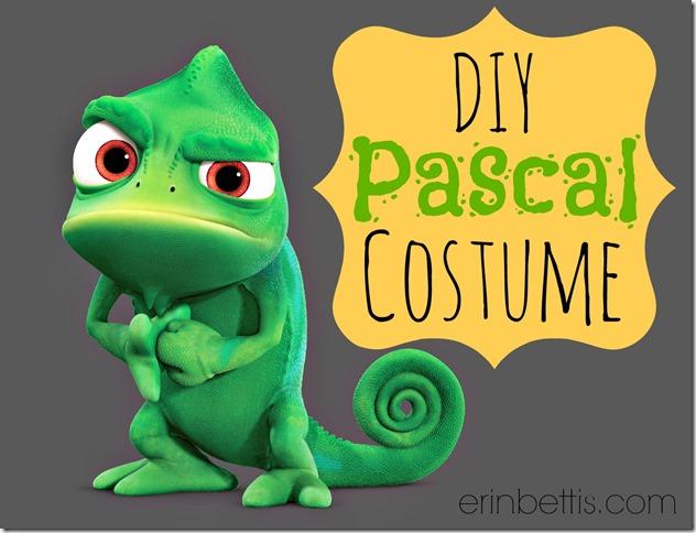 DIY Pascal Halloween Costume  erinbettis.com