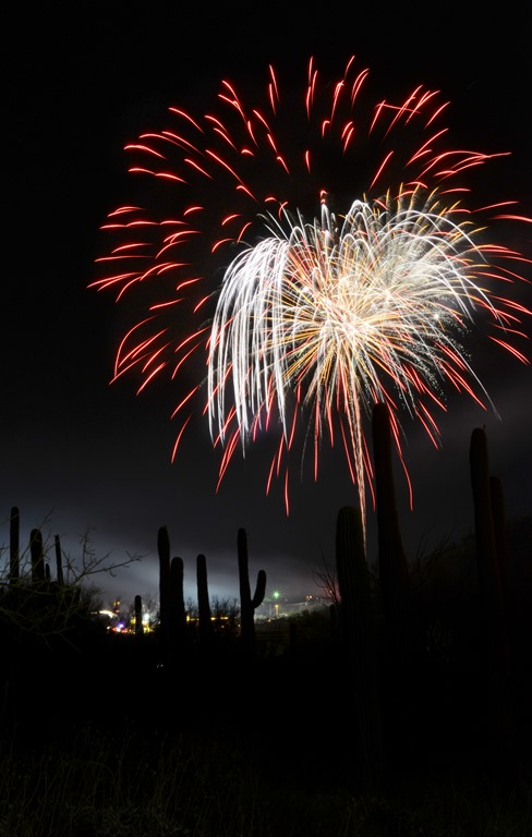 070313_4th of July_0168