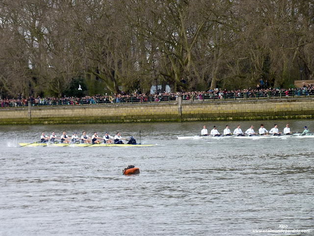 regata-oxford-y-cambridge-en-el-támesis.JPG