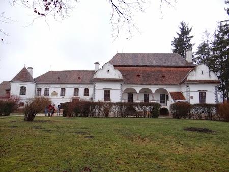 03. Castel Daniel - Varghis.JPG