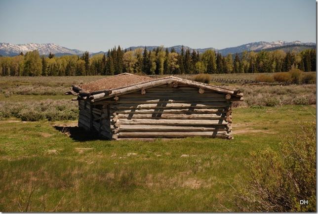 06-05-13 E Tetons Cunningham Cabin Area (5)