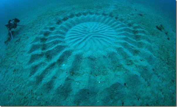 Crop Circles sous-marins (5)