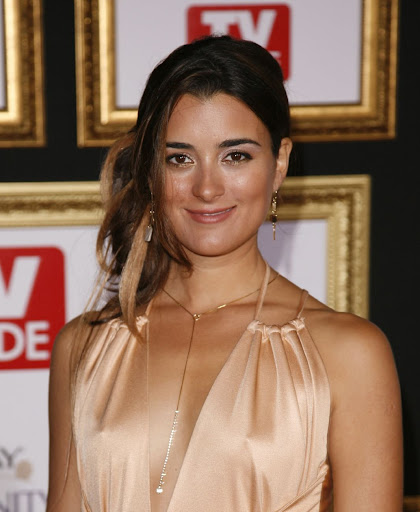 To download the Cote De Pablo - Images Gallery just Right Click on the