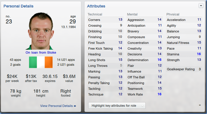 Glenn Whelan in Football Manager 2013