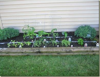 2011 Sq Ft Garden 008