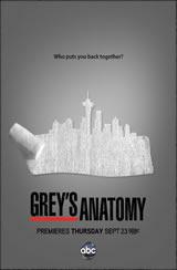 Anatomia de Grey 8x03 Sub Español Online