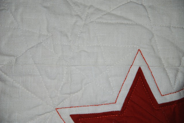 Quilted Christmas Cussion Quilting (1)
