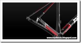 BMC TEAMMACHINE SLR01 (SWA) DURA ACE DI2 (1)