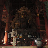 biggest bouda in japan in Nara, Osaka, Japan