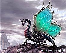 lindo Dragão