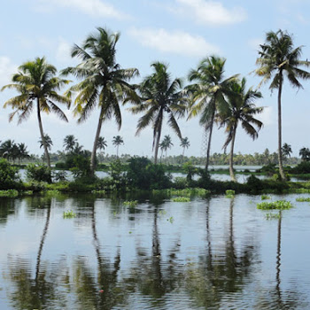 Extended 3 Night Kerala Houseboat Tour
