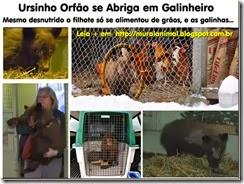 urisnho-orfao_thumb[1]