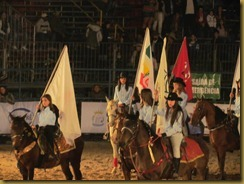 cajuru-rodeio-show2012 (8)