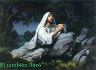 JesusEnOracion-ElTambienLloro-0605