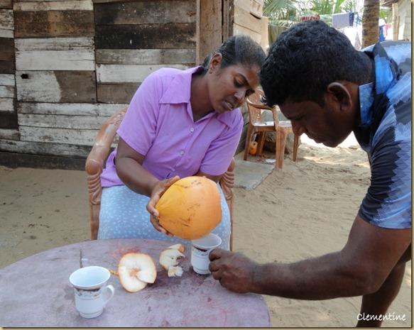Jus de noix de coco Sri Lanka