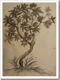 Tree 15112013