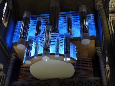Obiective turistice Monaco: orga catedrala Monte Carlo