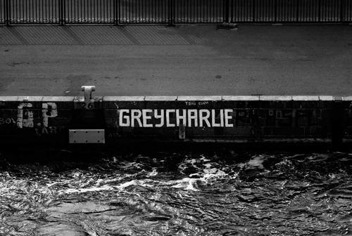 Grey-Charlie