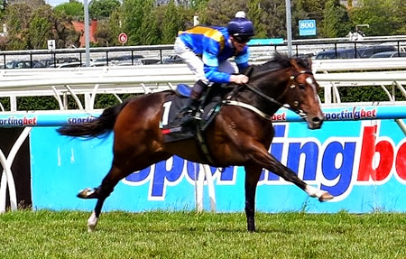 dundeel_gallop 3