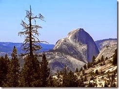 Yosemite Nat Park 069