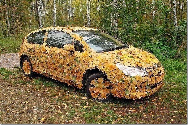 猜猜看這裡有什麼,這是秋季的偽裝秀嗎!