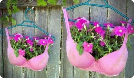 bra-flower-pot