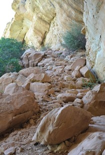 Prehistoric Steps