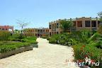 Фото 12 Al Mas Palace hotel