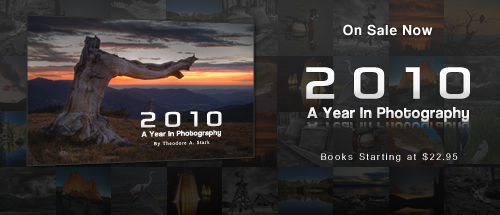 2010 - A Year In Photography Book