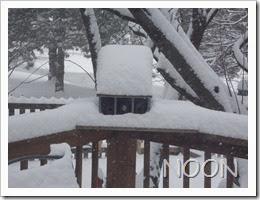 12oclock Snow Storm 02-04-2014 (2)