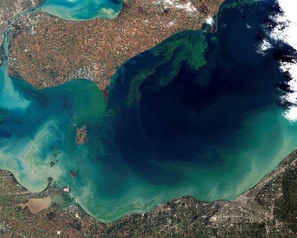 The green scum shown in this image is the worst algae bloom Lake Erie has experienced in decades. The Landsat-5 satellite acquired the top image on October 5, 2011. Vibrant green filaments extend out from the northern shore. The bloom is primarily microcystis aeruginosa, an algae that is toxic to mammals. Landsat image created for NASA's Earth Observatory by Jesse Allen and Robert Simmon, using data provided courtesy of USGS. MODIS Rapid Response imagery provided courtesy of Jeff Schamltz