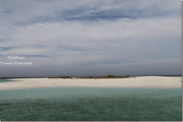 馬爾地夫 野餐島 浮潛 (58)
