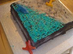 Beach Cake Back