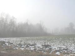 11.2011 Maine Otisfield foggy morning