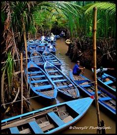 Antri di Mekong Delta 2