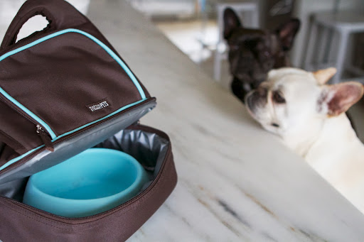 It's lightweight with storage for pet accessories and food.