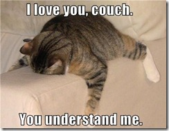 catcouch