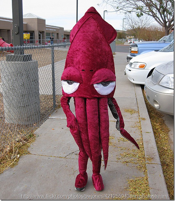 disfraz de calamar