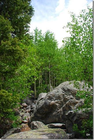 06-22-14 B RMNP Bear Lake (36)