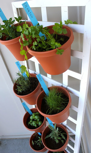 Ginger Snap Crafts The Home Depot Project Sneak Peek DIY Herb