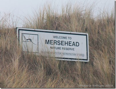 4-Mersehead-sign