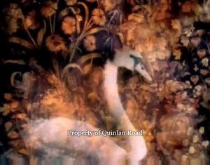 Bonny Swans - Video Capture 3